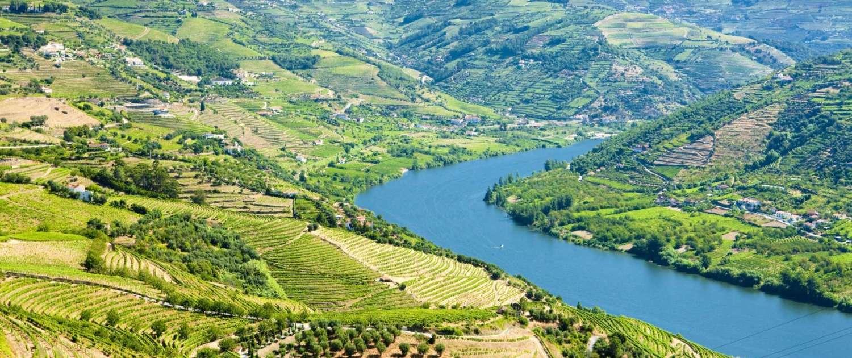 Le Douro Litoral est l'un des centres économiques portugais les plus importants et les plus dynamiques et aussi l'un des plus cosmopolites et développés du Portugal.