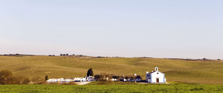 Les collines, marrons et jaunes à l'automne laissent deviner les collines pleines de fleurs au printemps, l'enchainement des paysages d'oliviers, de chênes-lièges, les champs de tournesol en été, moulins typiques et hameaux aux maisons blanches avec leurs lignes jaunes et bleues.