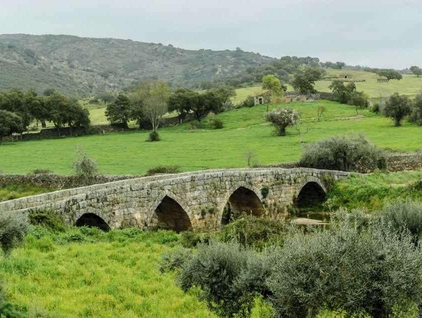 Village romain au 1er siècle, siège épiscopal sous influence des suèves et des visigoths, sous influence arabe au 8ème siècle avant d'être repris par les chrétiens au 9ème et confié aux Templiers au 13ème siècle.